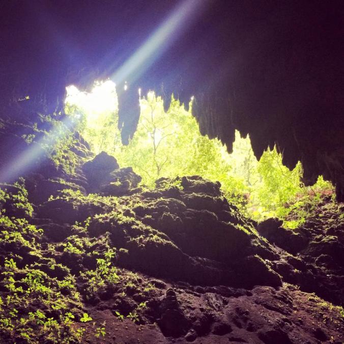 cavernas del rio camuy